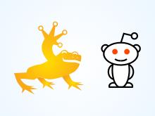Golden Frog Reddit AMA